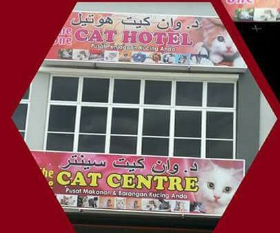 The One Cat Centre