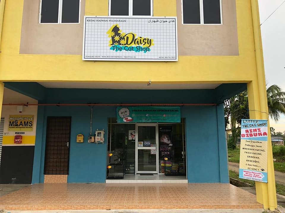Daisy The Cat Shop