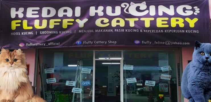 Fluffy Cattery Shop