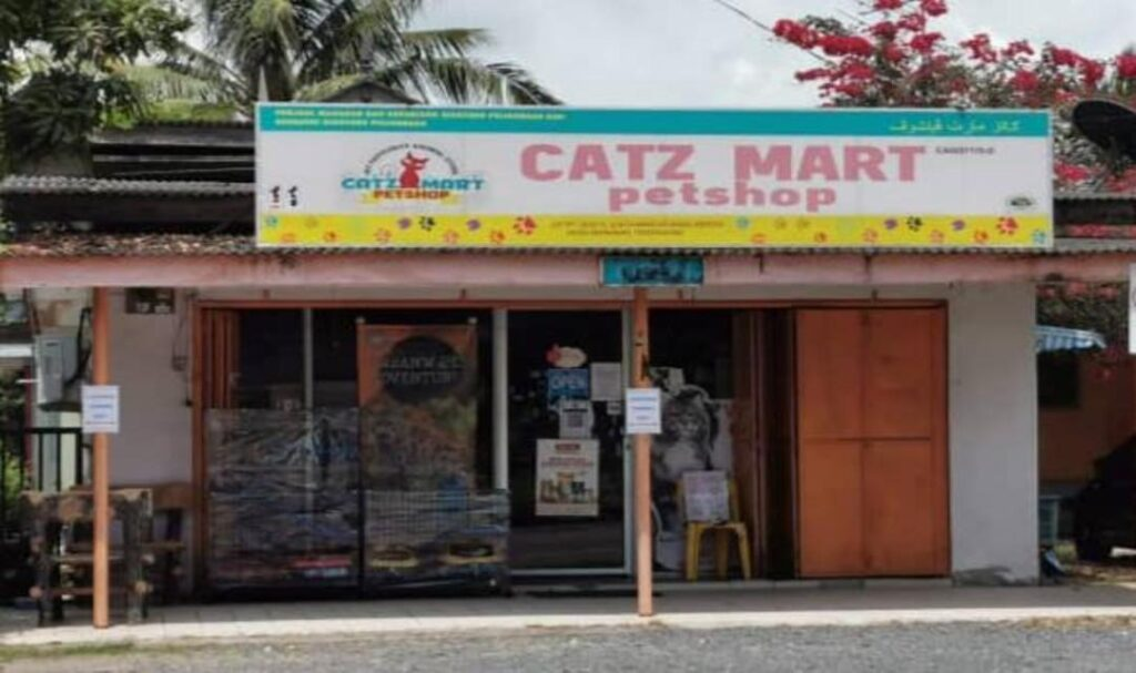 kedai kucing kemaman terengganu